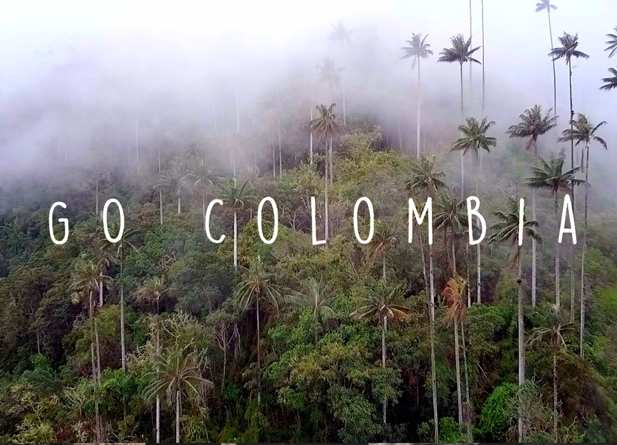GO Colombia